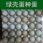 �G�さ巴岭u�N蛋受精卵受精卵90%以上